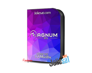 MAGNUM TV 12 MOIS